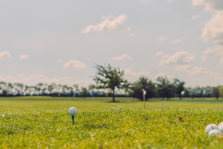 Golfball im Grün.
